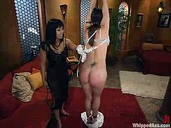 Lovely brunette girl gets tied up and spanked by DragonLily. Later on DragonLily sits on Bobbi's face and toys her pussy.
