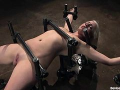 What a busty and kinky blond is being tortured in the free porn on free porn site! Lorelei Lee is the one who loves being inflicted to ridiculous pain!