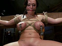 There's some pretty extreme tit torture with ropes, clamps and more in this video featuring Chloe Reece Ryder.
