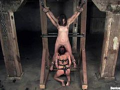 You will love this video because all these chicks are amazing. They get tied up first and then toyed deep in their smooth pussies.