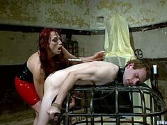 Blake is having fun with Nicki Hunter in a basement. He gets bound and humiliated and then enjoys having a strapon in his tight butt.