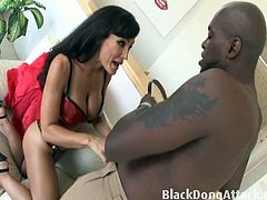 Courtesy of Black Dong Attack you can see how the busty brunette milf Lisa Ann enjoys a black cock in this awesome interracial free porn video. She loves some black action!