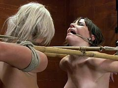 Dana Dearmond and Tara Lynn Foxx take their clothes off and get tied up. The guy fixes claws to their nipples and then girls lick each others pussies.