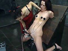 A beautiful brunette called JP gets bound by her dominant GF in a basement. Then she gets her ass decorated with electric wires and gets her snatch pounded with a dildo afterwards.