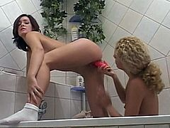 A charming brunette and a hot blonde are playing lesbian games in a bathroom. They please each other with fingering and then use a vibrator to satisfy each other.