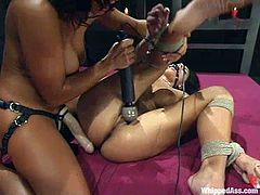 Sandra Romain tortures Mikayla before drilling her vag with a dildo