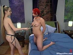 Blonde mistress Chanta-Rose and redhead slut Dana Dearmond are having BDSM fun indoors. Chanta binds and humiliates Dana and then decorates her tits with nipple clamps and fucks her snatch with a strapon.