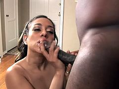 Lovely babe fondles her hot pussy and gives messy blowjob to Black guy. After that he licks her pussy and fucks hard on an armchair.