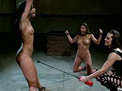 Two dominant vixens are going to play with three submissive girls in a video with strapon fucking, kinky electrical torture and more!