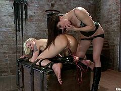 You don't always get to watch how one mistress is going to torture the other one! Well, our porn site can provide you with some rarity!
