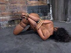 Petite and juicy ebony siren is being tortured by a white dude, who has no mercy towards her. Honey gets hogtied and suspended pretty high.