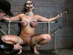 Trina Michaels will have her boobs turn a scary color in this bondage with ropes video where she's tied, toyed and tortured.