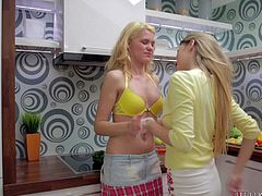Angel was cooking in the kitchen when by mistake she cut herself with the kitchen knife. Luckily her blonde gf Delphine was there and gave her a little kiss to make the pain go away. Yeah, she really made the pain go away as she licked her girl's tits and then offered her pussy for some licking action!