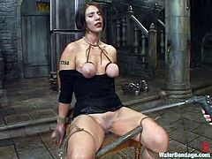 Brunette chick sits on a chair and fondles her pussy. Then she also toys herself and gets her vagina watered. Later on she gets suspended above the floor and toyed deep with big dildo.