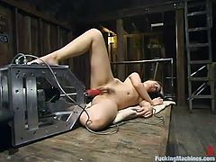 Kinky blonde Kimberly Kane is having some nice time in a barn. She plays with a fucking machine and gets multiple orgasms.