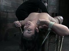 Cute brown-haired milf Pepper Foxxx allows some man to tie her to a wall in a basement. The guy pokes a massive dildo into Pepper's mouth and then rubs the toy against her pussy.