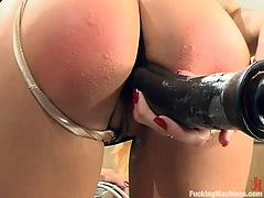 Superb blonde babe lifts her skirt up and gets her juicy pussy stuffed by different fucking machines. This girl also uses a vibrator.