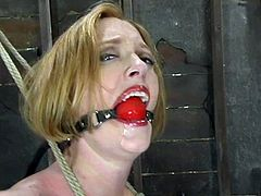 Believe it or not, this honey loves it in pain! She gets suspended and ball gagged, having her juicy melons tied up and stretched apart.
