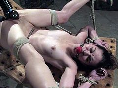 Sexy brunette girl strips her clothes off and gets hog tied. Later on she gets her dripping pussy toyed by a master.