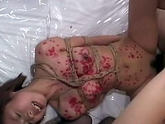 Dominated by a kinky couple.Poor Japanese teen babe gets what she don't deserves. The dude sticks his cock inside her mouth and inside her teen cunt while the lady works her bod with ropes and later with some hot wax.
