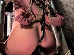 This gorgeous and petite siren Ally Ann is going to enjoy some wild BDSM shit today! She is so fucked up in bondage, suspension an all the other weird staff.
