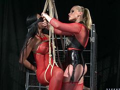 Hawt latex mistress teases pussy of one naughty brunette wearing red body fishnet. She whips her butt and makes her suck fingers.