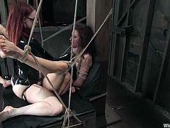The naughty girl in glasses is Claire Adams and she's playing in a lesbian bondage femdom toying session with Princess Donna Dolore.