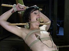 Bound and gagged brunette girl gets her tits tortured with claws. Later on she also gets her vagina toyed in hot bondage video.