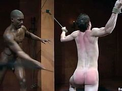 Scott Alexander gets tied up and tortured by CJ. He also gets his dick sucked. After that Scott gives a blowjob to CJ and gets pounded in the ass.