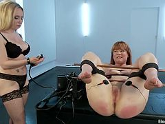 Claire Robbins has her legs spread open by her dominatrix master Aiden Starr. She has a pole between her legs so she can't close them. The slave gets an electric prod taken to her vagina and has shocks sent to her thighs. Finally the master puts the prod up her slave's ass and shocks her asshole.