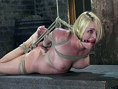 She is a fetish girl and she loves getting painsulted. That's what is going to happen to her in this amazing BDSM video!