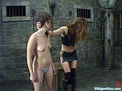 Kym Wilde and Maya Matthews are playing BDSM games indoors. The submissive chick gets humiliated and tortured by her mistress and then enjoys having a strapon in her snatch.