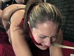 What an action is going on in here! Steaming hot and sizzling siren Daphne Rosen is dropping her huge tits on her sex slave Trina Michaels.