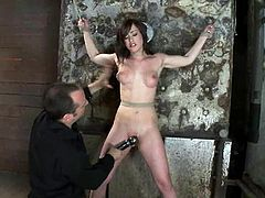 Busty brunette hottie Jennifer White gets tied up to a wall indoors. She bites her nipples passionately and then gets her snatch toyed to a great orgasm.