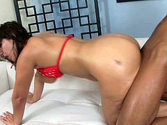 Bitch Lexxi Lockhart with huge juicy ass and big fake hooters in red bra only gets pounded from behind by tattooed asian stud Keni Styles and rides on his meaty pecker.