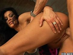 Lisa Ann is a spectacular babe with boobs that no one can resist. She is taking a huge cock inside her pulsating cunt and enjoys it to the maximum when she sucks it too.