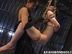 Asians Bondage brings you an amazing free porn video where you can see how a perverse Japanese mistress fucks her slave with a strapon cock while suspending her on ropes.