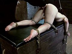 Hot brunette girl lies on a wooden box being tied up by her master. Then he starts to finger and toy her vagina with big dildo.
