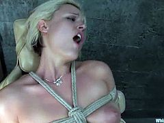 That's how Felony is going to torture Jasmine Jolie, a smoking hot blond sex slave. She loves obeying her mistress and getting some pain!