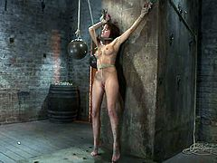 Lovely brunette girl gets undressed and bound by her master. Later on he fixes claws to her nipples and chokes with ropes.