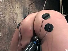 Annette Schwarz, Jade Marxxx and one more girl are having BDSM fun in a basement. One of the chicks lets the two other tie her up and attach wires to her vag. Then the mistresses fuck the slave's vag with a strapon and she enjoys it much.
