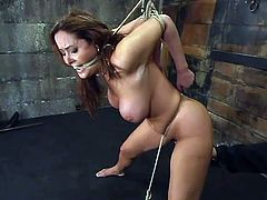 Busty brown-haired chick gets undressed and tied up by her master. Then he chokes Christina and fixes claws to her nipples.