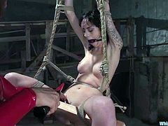 What an amazing and tremendous BDSM scene this is! Smoking hot and delightful chick Isis Love is giving her slave Kayden Faye some pain!