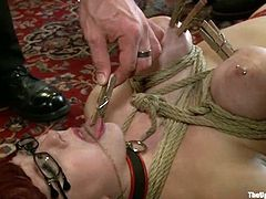 Lilla Katt, Nerine Mechanique and a slim Asian chick get restrained by some dude. Then the man attaches clothes pegs to the girls' tits and enjoys the way they moan in pain.