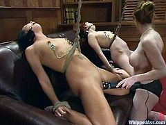 BDSM femdom threesome in the luxury office and luxury chicks
