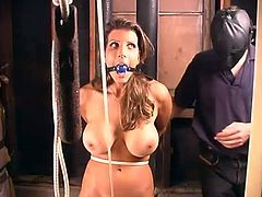 Curvaceous brunette girl gets hog tied and gagged by her master. Later on she also gets suspended and toyed deep in her dripping pussy.
