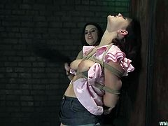 Daphne Rosen and Michelle Brown are having BDSM fun in a basement. The brunette pours hot wax onto her slave's butt and then fucks her coochie from behind with a strapon.