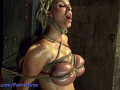 Watch the hot blonde slave Holly Halston getting tied up in the dungeon where a hot master and a sexy brunette mistress take their time to abuse her sexy body.