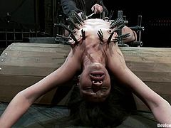 Nasty chick Yasmine de Leon is having fun in a basement. She lets some dude chain her and attach clothespegs to her body and then gets fucked by a sex machine like never before.