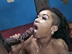 Take a look at this hardcore scene where the sexy ebony babe Skin Diamond is drilled by this guy's big black cock until her mouth's filled by warm cum.